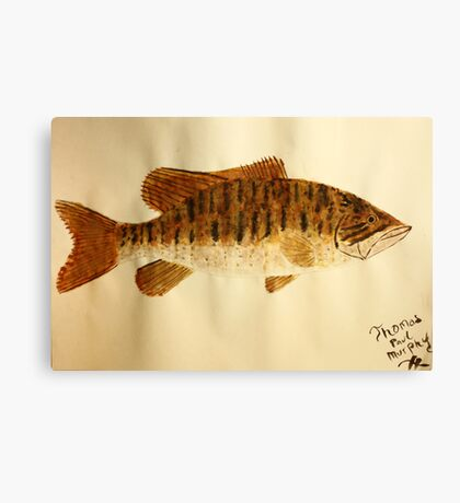 Smallmouth Bass Canvas Print