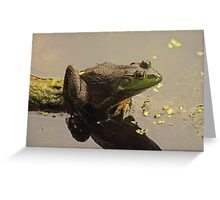 Frog 8376 Greeting Card