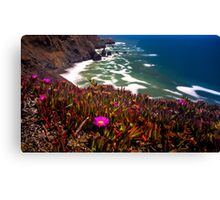 30 Seconds of Daylight Canvas Print