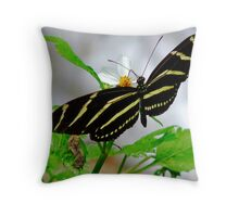 Zebra Longwing. Throw Pillow