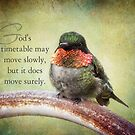 God's timetable-inspirational by vigor
