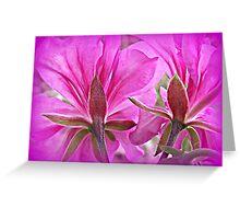 blushing blossoms Greeting Card