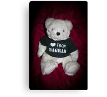 BAGRAM BEAR Canvas Print