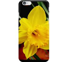 Daffodil Delight iPhone Case/Skin