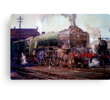 """""""Kenilworth"""" on shed. Canvas Print"""