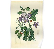 Flora4 Poster