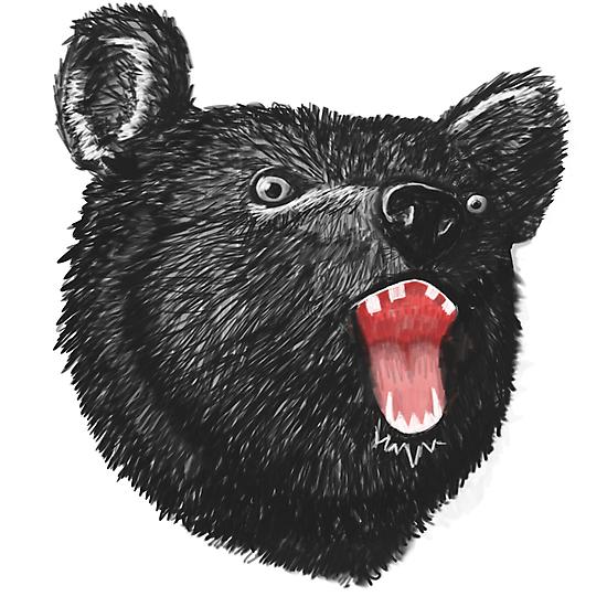Hey it's a Bear  by Steven Stills