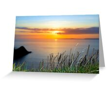sunset over loop head with the wild tall grass Greeting Card
