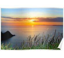 sunset over loop head with the wild tall grass Poster
