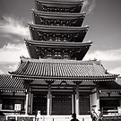 Temple of light and shadows - Japan by Norman Repacholi