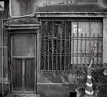 Parking for one pot plant - Japan by Norman Repacholi