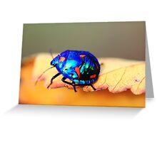 stink beetle Greeting Card