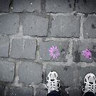 Petals and a Rose on the Ground by handyandypandy