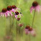 Dancing floral Skirts by Rosanne Jordan