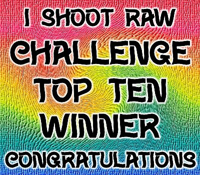 I shoot raw .. challenge top ten by LoneAngel