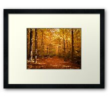 Scenic Leaf Covered Path in a Yellow Mystical Fall Forest ~ Autumn Foliage Landscape Framed Print