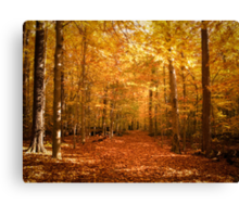 Scenic Leaf Covered Path in a Yellow Mystical Fall Forest ~ Autumn Foliage Landscape Canvas Print