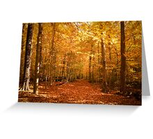 Scenic Leaf Covered Path in a Yellow Mystical Fall Forest ~ Autumn Foliage Landscape Greeting Card