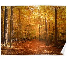 Scenic Leaf Covered Path in a Yellow Mystical Fall Forest ~ Autumn Foliage Landscape Poster