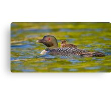Now introducing... Canvas Print