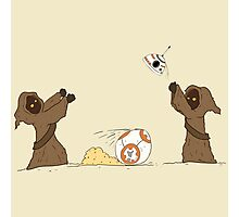 BB-8 Keep Away Photographic Print