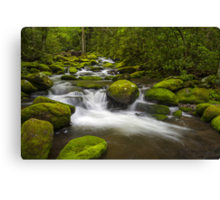 Smoky Mountains Paradise - Great Smoky Mountains Gatlinburg TN Canvas Print