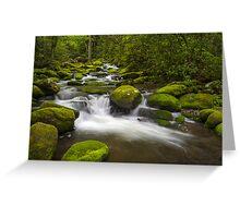 Smoky Mountains Paradise - Great Smoky Mountains Gatlinburg TN Greeting Card