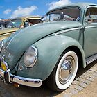 VW 9704 by Steve Woods