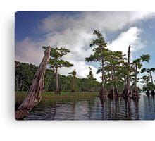 Blue Cypress Lake #2 Canvas Print