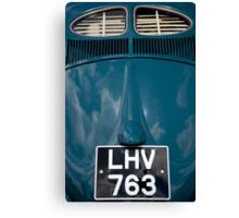 VW 9749 Canvas Print