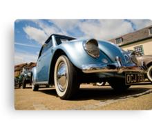 VW 9760 Canvas Print