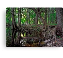 Shingle Creek #1 Canvas Print