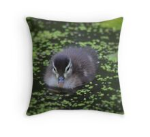 wow this is so much nicer than the inside of my egg! Throw Pillow