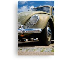 VW 9781 Canvas Print