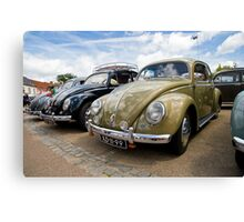 VW 9783 Canvas Print