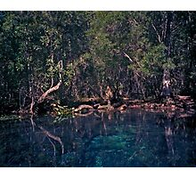 Wacissa Springs #1. Photographic Print