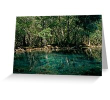 Wacissa Springs #2. Greeting Card