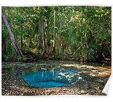 Chassahowitzka Springs. Poster