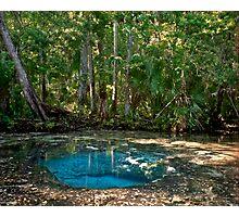 Chassahowitzka Springs. Photographic Print