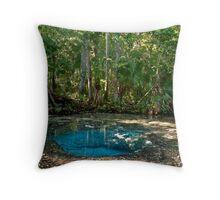 Chassahowitzka Springs. Throw Pillow