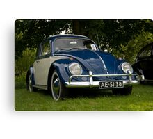 VW 9863 Canvas Print