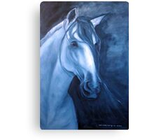 Horse - Andalusian in Indigo Canvas Print
