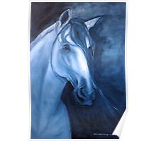 Horse - Andalusian in Indigo Poster