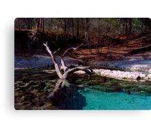 Little River Spring. Canvas Print