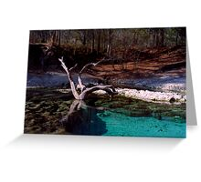 Little River Spring. Greeting Card