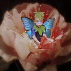 fairies in my garden by ToniBlake