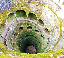 Spiral Staircase by Dinorah Imrie