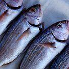Kalk Bay fish by fourthangel