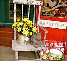 Country Store by Shulie1