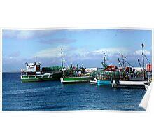Kalk Bay fishing boats Poster